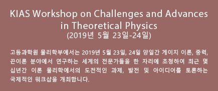 KIAS Workshop on Challenges and Advances in Theoretical Physics