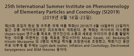 25th International Summer Institute on Phenomenology of Elementary Particles and Cosmology (SI2019)