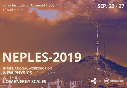 New Physics at the Low Energy Scales (NEPLES-2019)